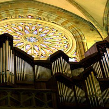 Catedral de Santiago. Órgano