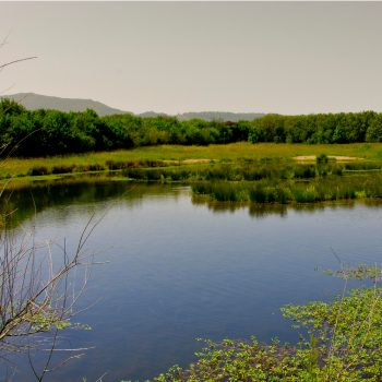 Parque Ecológico de Plaiaundi